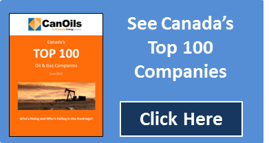 Top 100 Canadian Companies Report